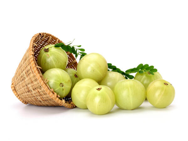 Indian gooseberry for Platelet count