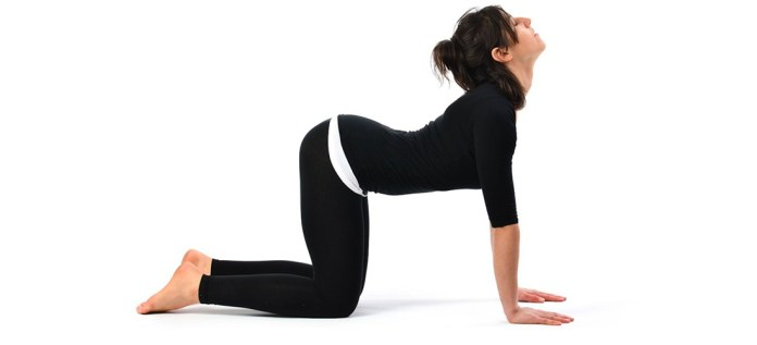 Bitilasana yoga pose