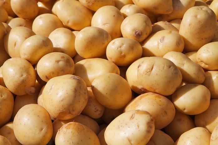 Potato vegetable for health