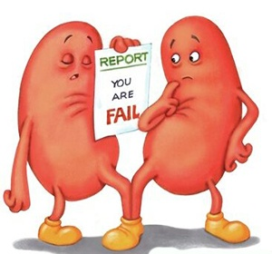 Treatment of Kidney failure in a natural way