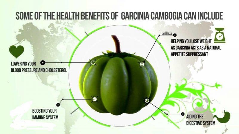 garcinia cambogia for blood pressure