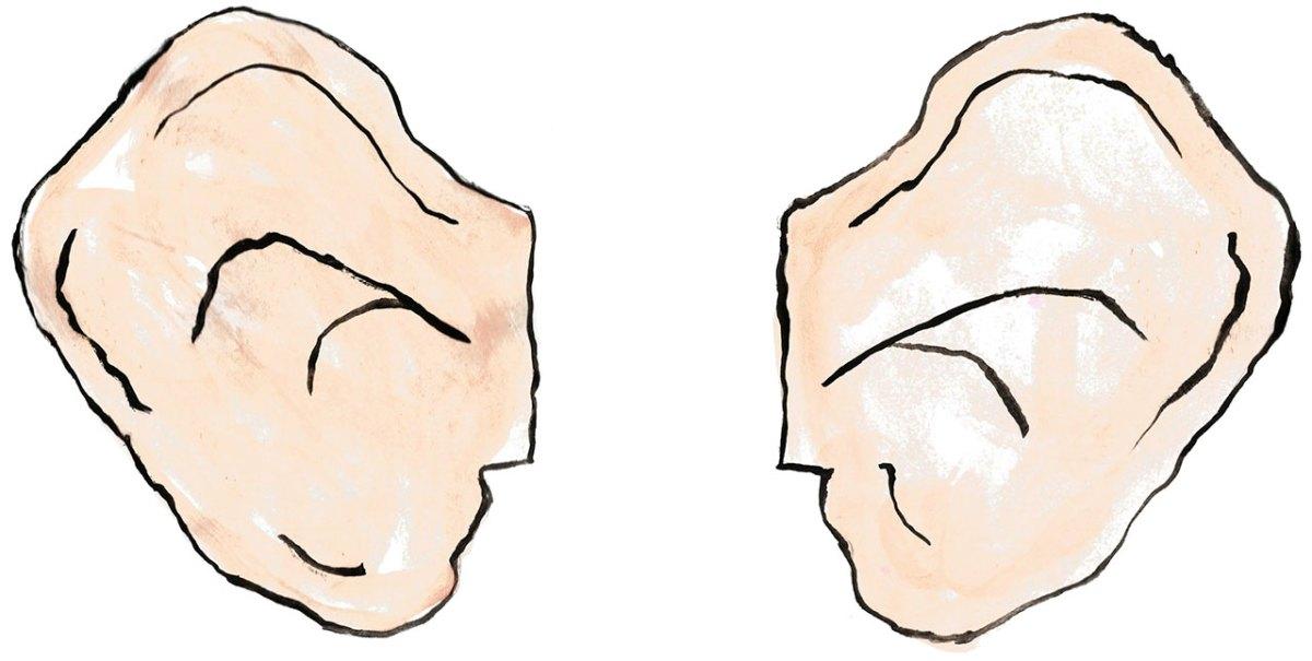 bfg-ears