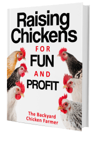 raisingchickens3D