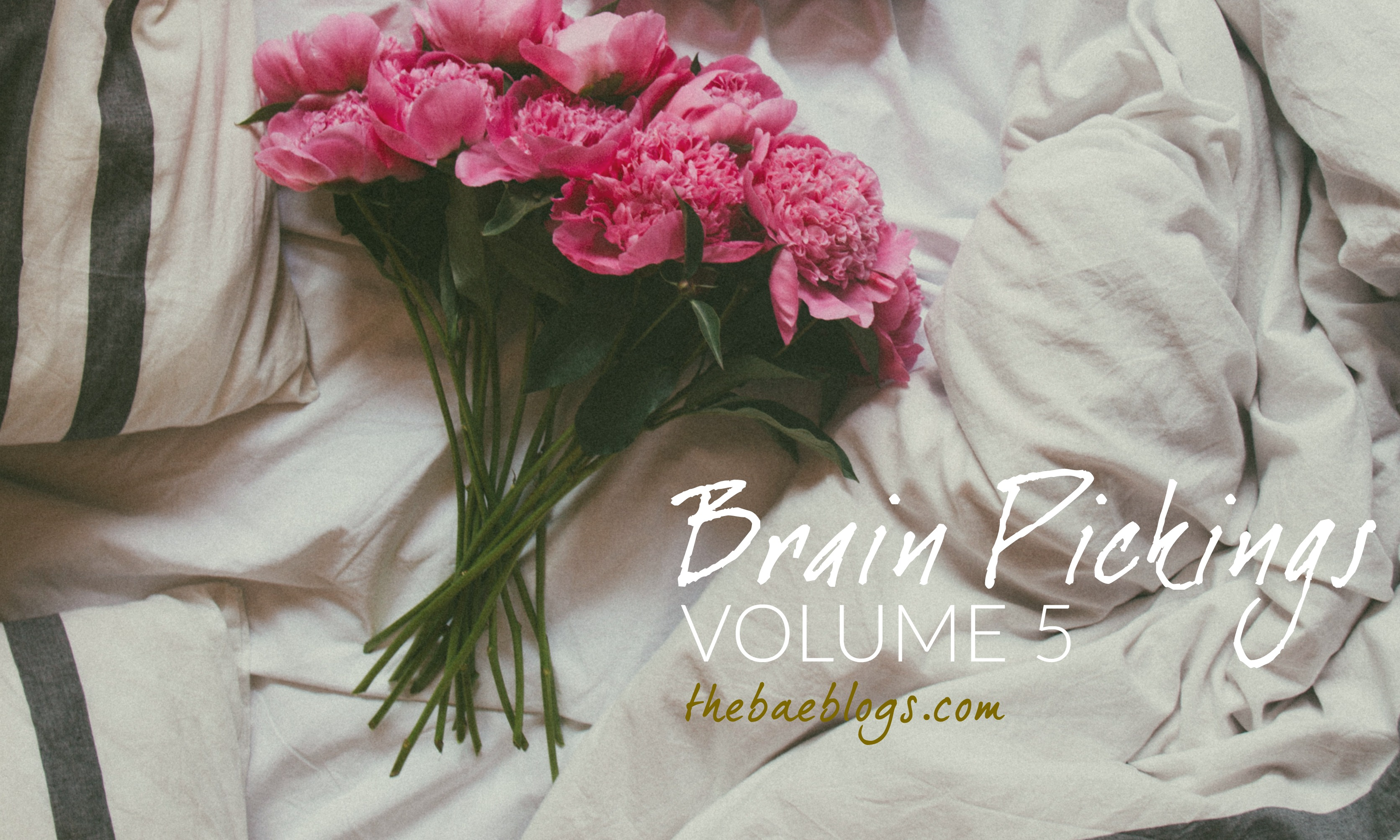 brain-pickings-vol-5