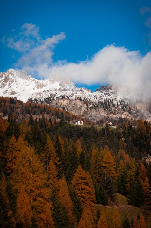Moena colori autunno