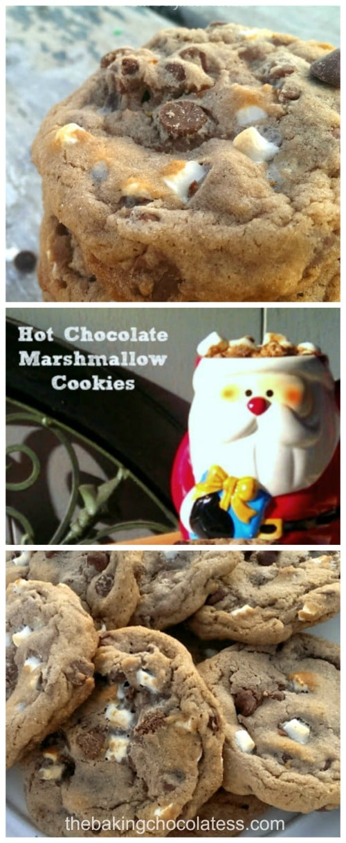 'Comfy Cozy' Hot Chocolate & Marshmallow Cookies