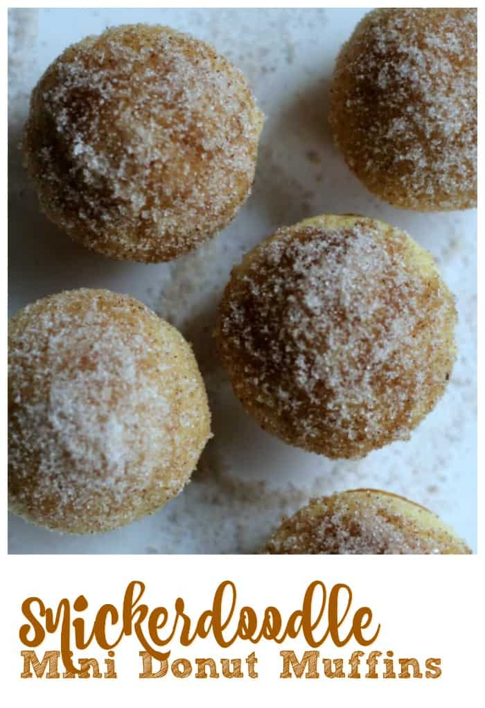 Snickerdoodle Mini Donut Muffins - Snickerdoodles are referred to as