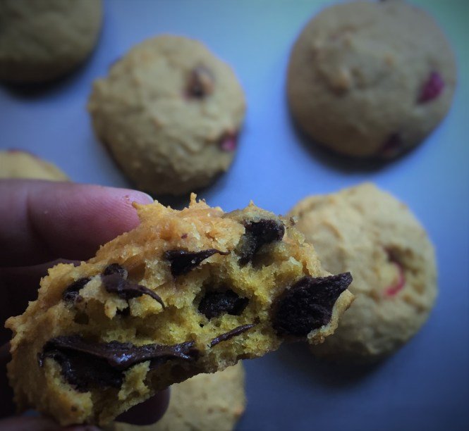 Pumpkin Chocolate Cranberry Cookies