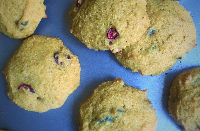 Pumpkin Chocolate Cranberry Cookies