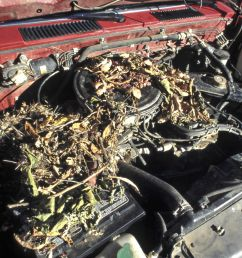 car wiring harnes repair cost [ 4302 x 2911 Pixel ]