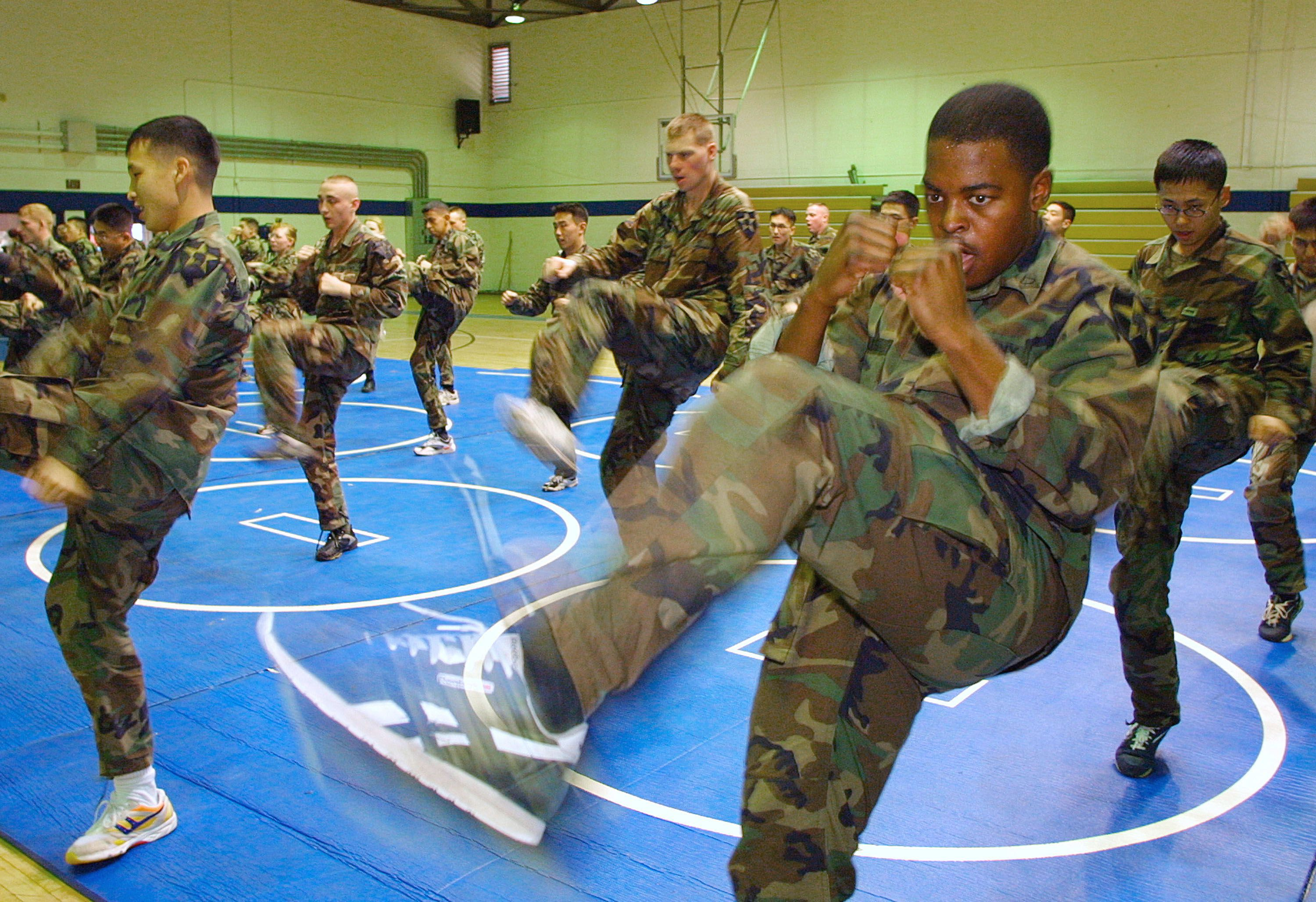 Us Army Body Weight Workout