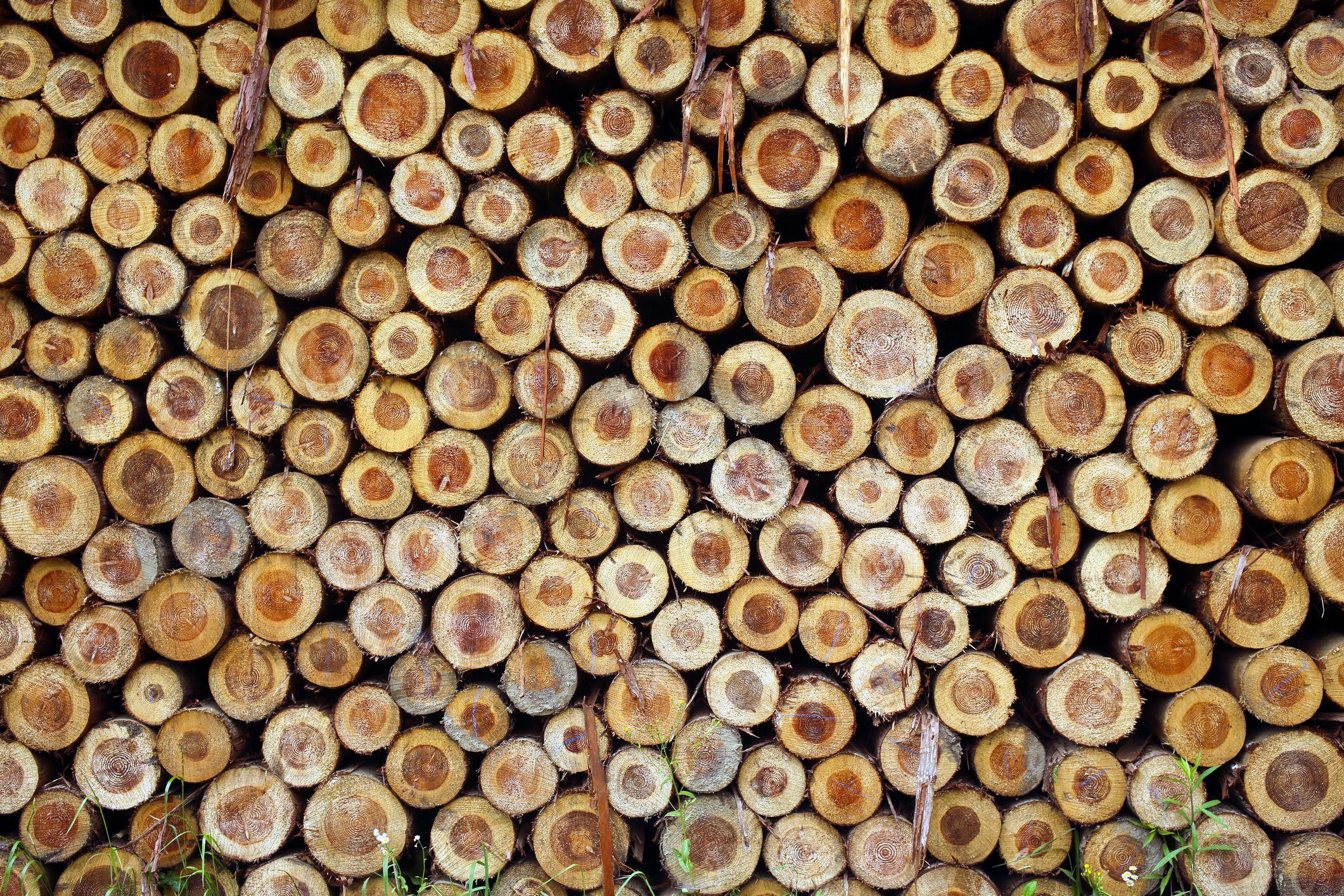 Cedar Logs For Sale Missouri