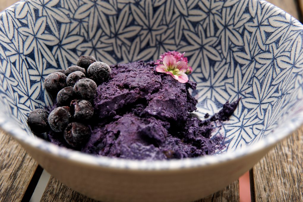 Blueberry Nice Cream Blueberry Nice cream Blueberry Nice cream DSC01358 2 e1496216372886