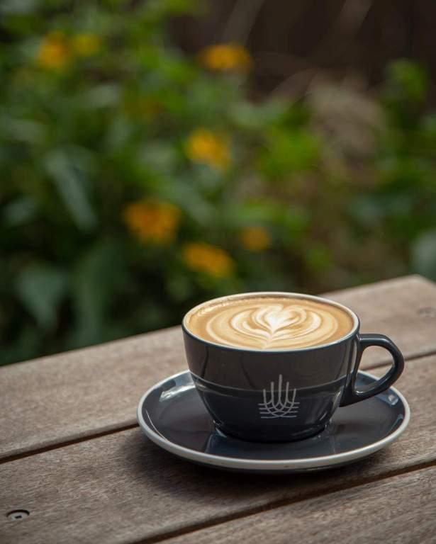 Wildflower Latte