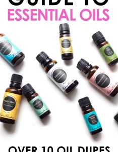 Many edens garden essential oils range from making them an affordable comparable also the guide to young living dupes rh theballeronabudget