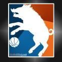 Ballhog logo 2015-16 test
