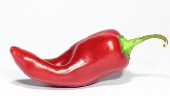 hot pepper metabolism hack