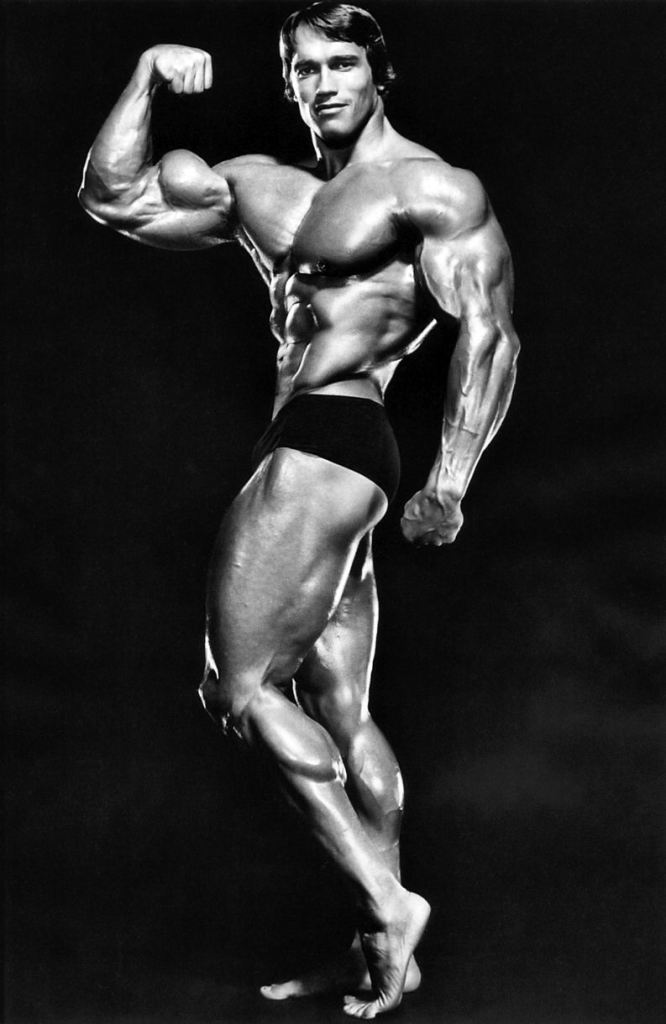 Arnold 1975