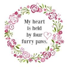 heart held by paws image