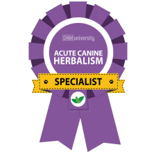 Acute Canine Herbal Specialist Image
