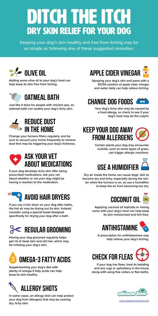 dry skin dog towel infographic