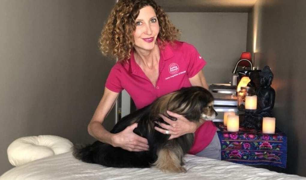 Barking Princess canine massage - woman massaging dog on massage table image