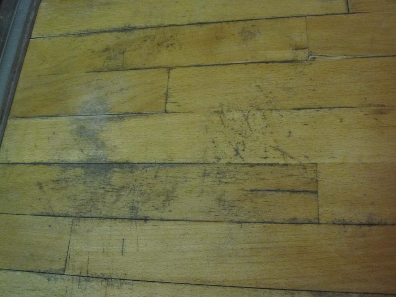 kitchen cabinet software waste basket 7 ways to remove black mold on wood - the basic woodworking