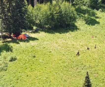 Mountain Dispatch: West Elk Wilderness.