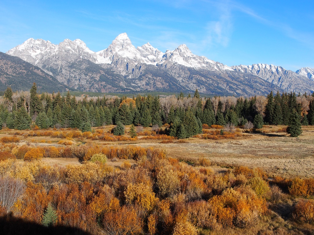 Fall in Grand Teton National Park.