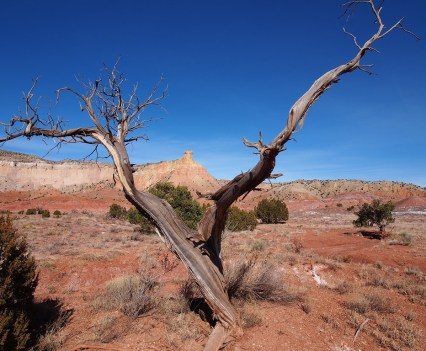 Okeefee Landscape Tour at Ghost Ranch - Basin and Range Magazine