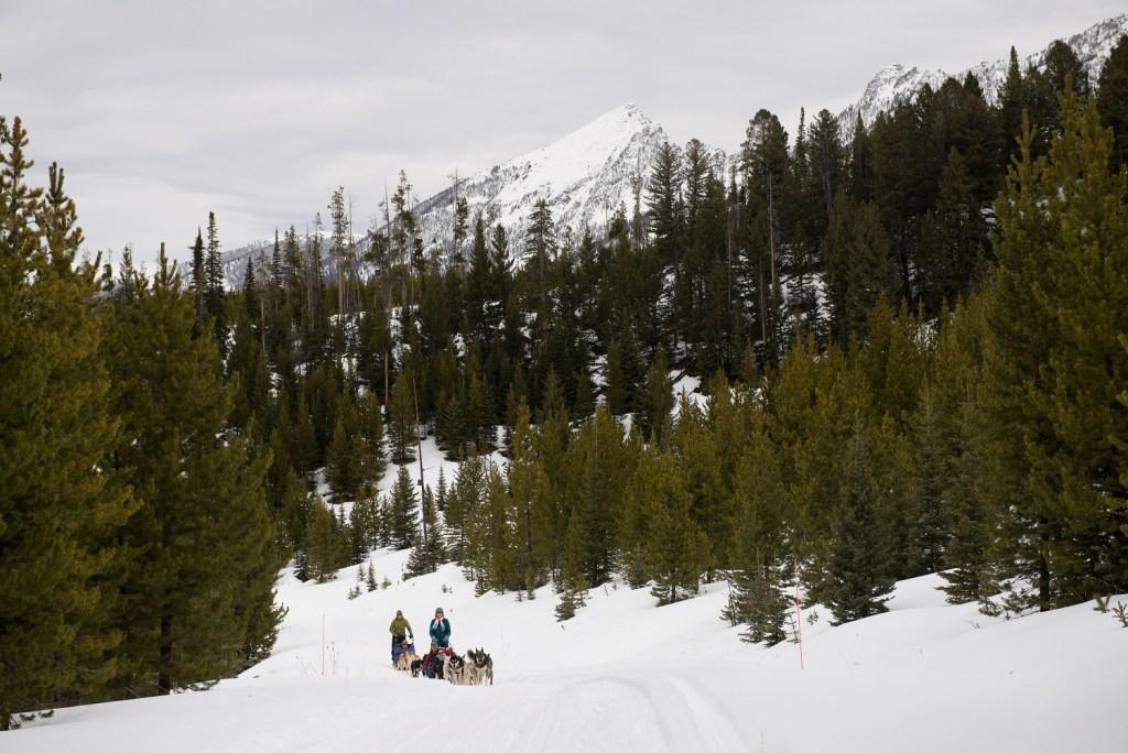 Spirit of the North Sled Dog Adventures, Big Sky, Montana