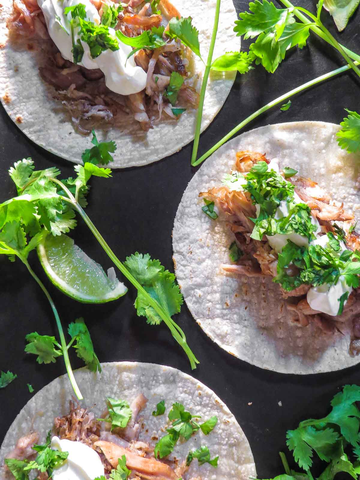 Papa's Sous Vide Carnitas - My dad loves experimenting with sous vide cooking. His sous vide carnitas are cooked for 24H then broiled for a bit to get a nice crisp for tacos and the mexican celebration of Cinco de Mayo!