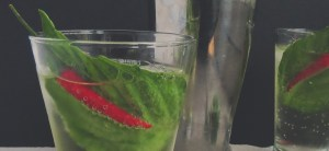 Thai Red Chilli Basil Fizz - Set your tastebud rockets off with this spicy cocktail made using hot Thai red chillies, yummy basil and some gin!