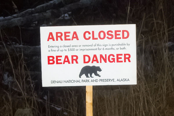 bear danger sign
