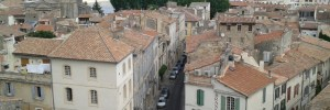 Painters and Wildflowers: A Week in Provence