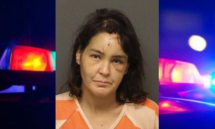 GV Woman Tased During Arson Investigation
