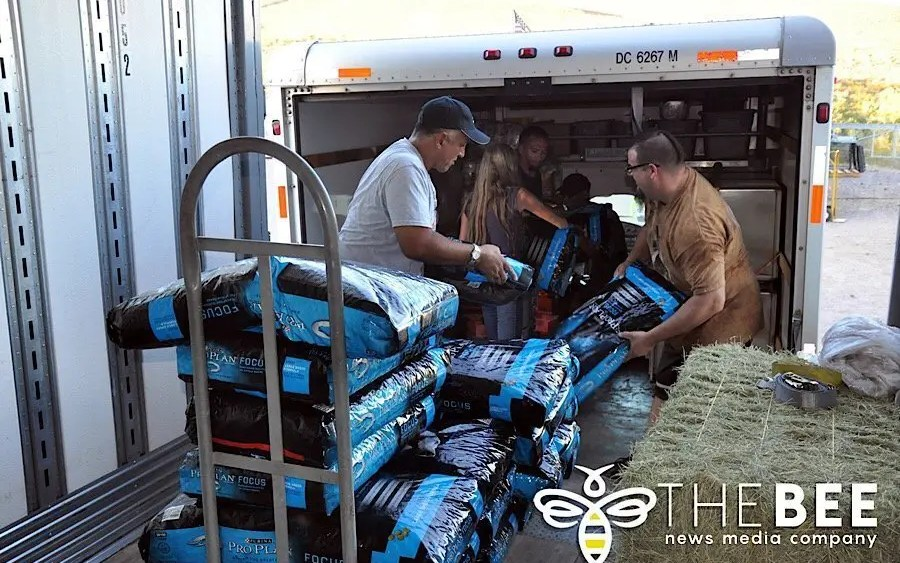 Nestlé Purina donates dog and cat food to sanctuary; helps fill the bellies of local dogs and cats