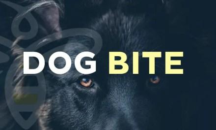 Dog Bite (Thursday)
