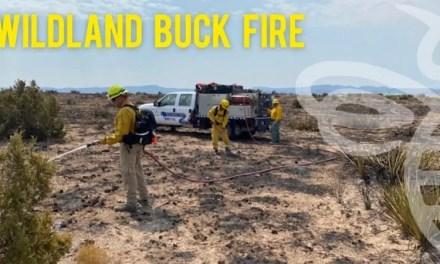 Wildland Fire Assignment