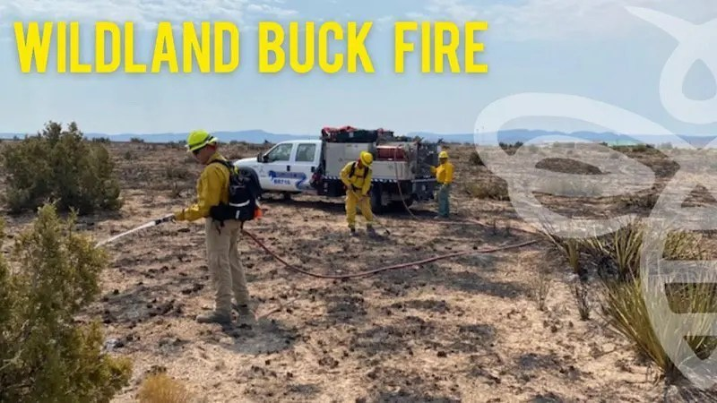 Wildland Fire Assignment