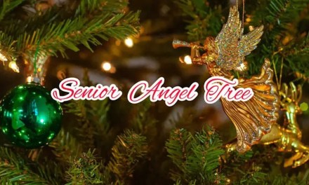 BE AN ANGEL TO LOCAL SENIORS IN NEED