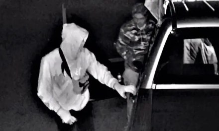 Public Assistance Requested in Theft from Vehicles