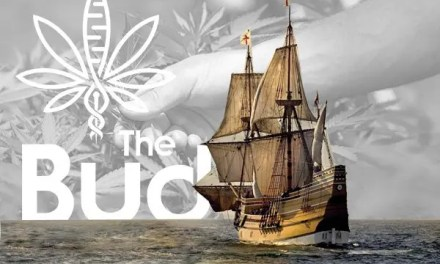 Hemp seeds arrived by the Mayflower?