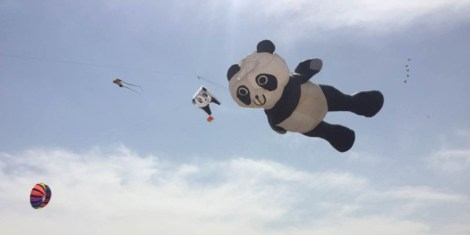 R Go Fly a Kite at the Beijing Kite Festival This Week