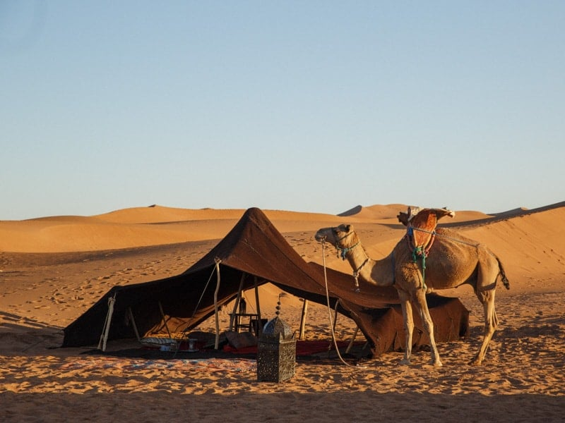 Luxury Desert Camp Morocco - afternoon Tea
