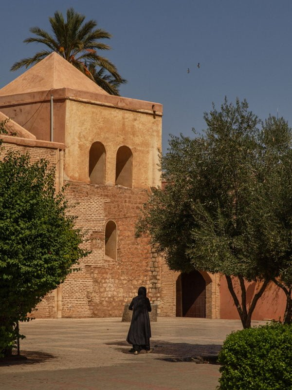 Traditional Buildings, Architecture and Trees in Marrakech