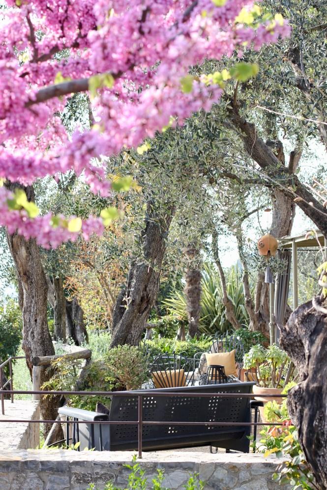 LOCANDA AL COLLE | the belle abroad
