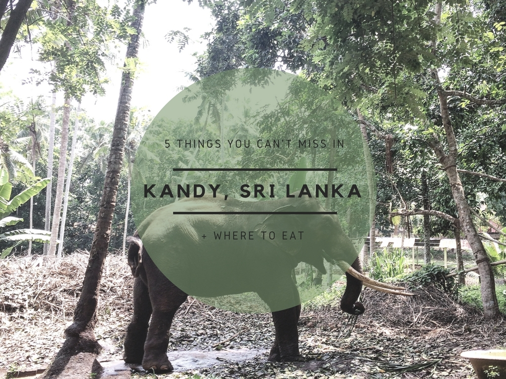 5 THINGS TO DO IN KANDY + WHERE TO EAT