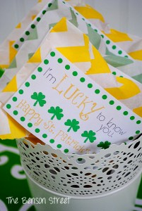 6Lucky Treat Bags at www.thebensonstreet.com