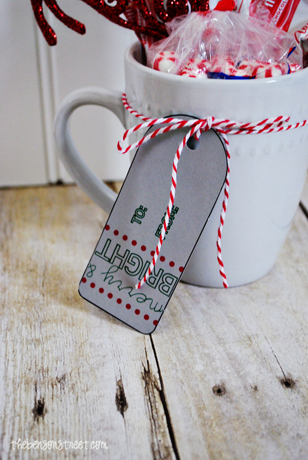 Quick and Easy Christmas Gift Idea at thebensonstreet.com